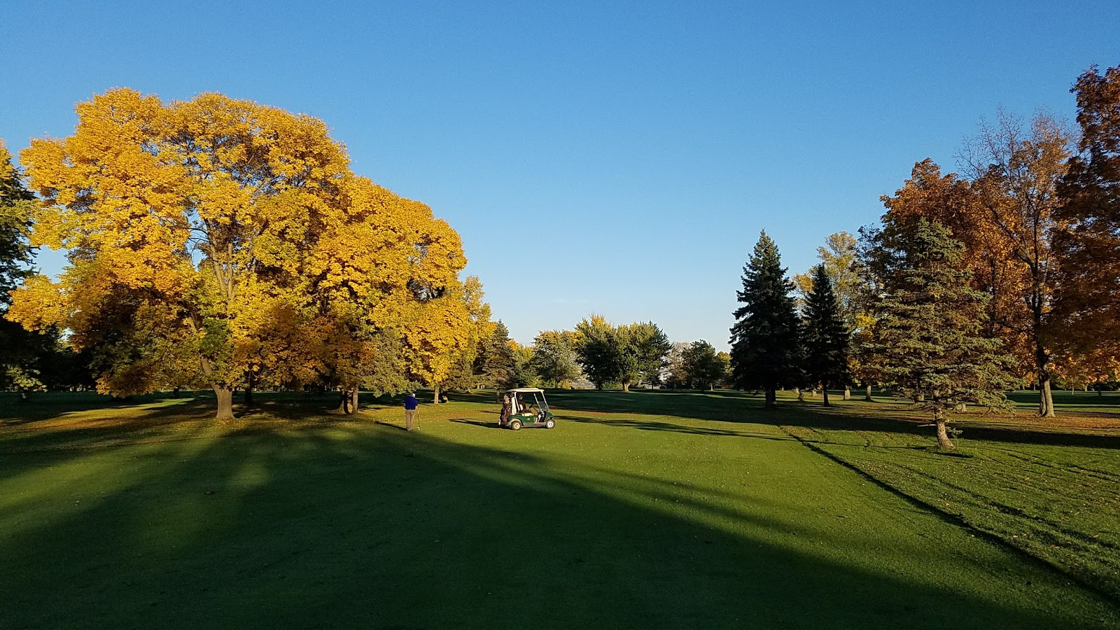 Fall Shots: Four cool course photos from October at SFCC